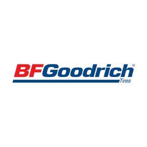 BFG-Logo-4C1